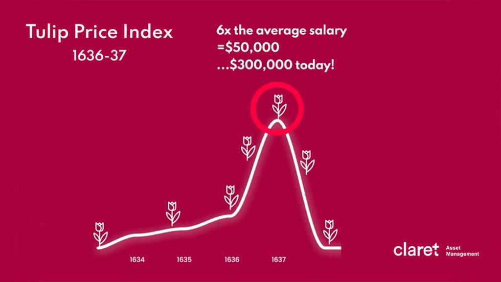 financial bubbles - tulip mania chart